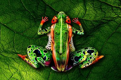 Ribbiting | Models appear as a frog. (Image | The Mirror)